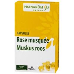 Muskusroos Chili (40 caps)