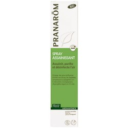 Spray assainissant (153 ml)